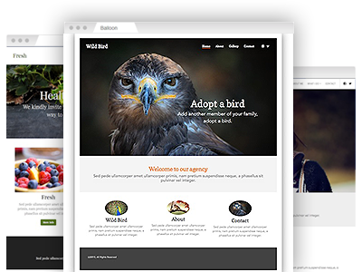 A variety of easy–to–re–design themes